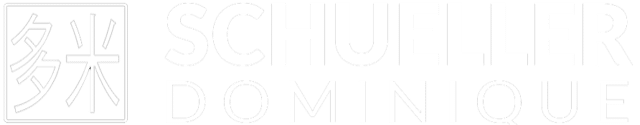 Logo Dominique Tuina